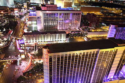 Flamingoes Photograph - View From Eiffel Tower In Las Vegas - 01131 by DC Photographer