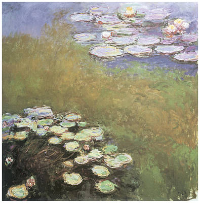 White Waterlily Painting - Water-lilies by Claude Monet