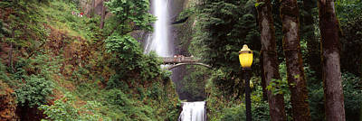 Multnomah Falls Photograph - Waterfall In A Forest, Multnomah Falls by Panoramic Images