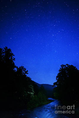Small Forest. Beauty Photograph - Williams River Summer Solstice Night by Thomas R Fletcher