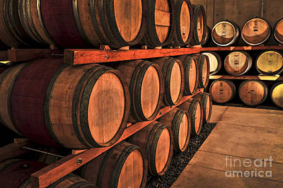 Wine Royalty-Free and Rights-Managed Images - Wine barrels by Elena Elisseeva