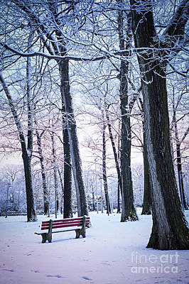 Photograph - Winter Park by Elena Elisseeva