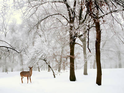 Deer Digital Art - Winter's Breath by Jessica Jenney