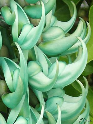Jade Vine Art Print by Ellen Henneke