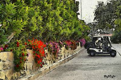 Photograph -  La Cumbre Golf Carts by Floyd Snyder