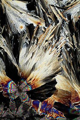 Xylose Crystals Art Print by John Durham