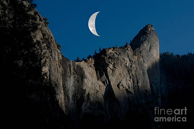 Yosemite National Park Art Print by Mark Newman