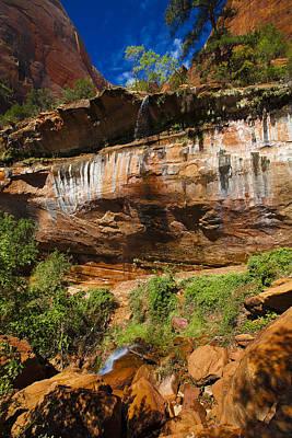 Photograph - Zion National Park Usa by Richard Wiggins