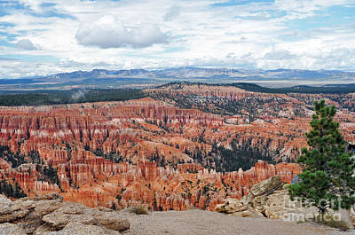Photograph - 409a Bryce Canyon by NightVisions