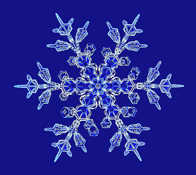 Light Micrograph Photograph - Snowflake by Kenneth Libbrecht