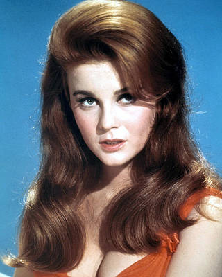 Photograph - Ann-margret by Silver Screen