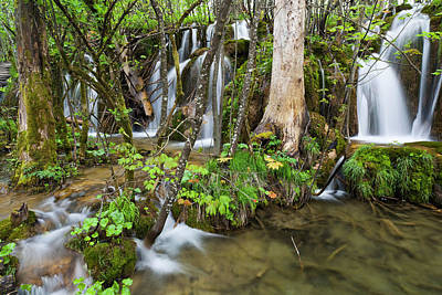 Flooding Photograph - The Plitvice Lakes In The National Park by Martin Zwick