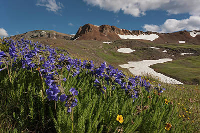 Avens Photograph - Usa, Colorado, San Juan Mountains by Jaynes Gallery