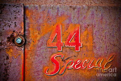 Photograph - 44 Special by Colleen Kammerer