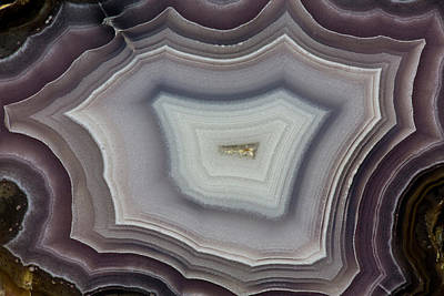 Mineral Photograph - Banded Agate, Quartzsite, Az by Darrell Gulin