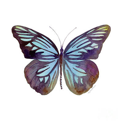 Painting - 45 Pareronia Tritaea Butterfly by Amy Kirkpatrick