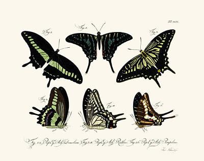 Lime Drawing - Butterflies by Splendid Art Prints