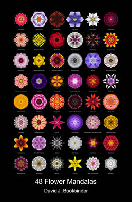 Photograph - 48 Flower Mandalas by David J Bookbinder