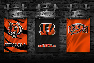 Photograph - Cincinnati Bengals by Joe Hamilton