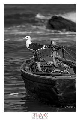 Photograph - 4934 by Carlos Mac