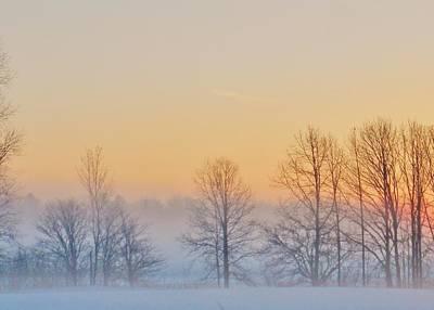 Mistletoe - Winter Landscape by Victoria Fischer