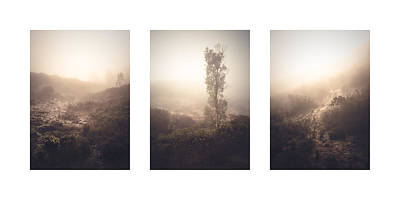 Photograph - 4s Ranch Fog Collage by Alexander Kunz