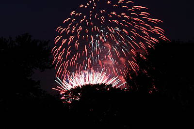 4th Of July Fireworks - 011313 Art Print by DC Photographer