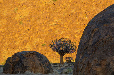 Africa, South Africa, Richtersveld Art Print
