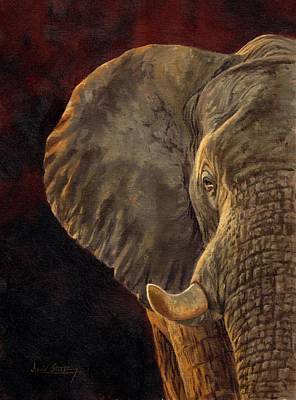 Elephant Painting - African Elephant by David Stribbling