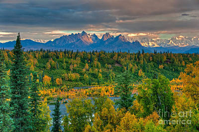 Photograph - Alaska Range by Mark Newman
