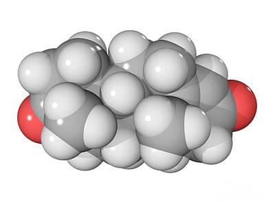 Andro Photograph - Androstenedione Hormone Molecule by Laguna Design