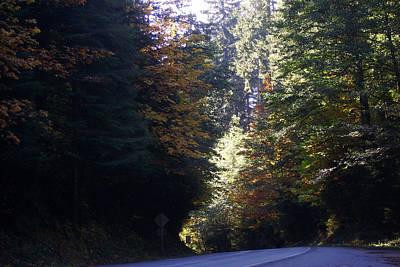 Scenery Photograph - Autumn 4 by J D Owen