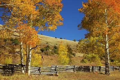Autumn Cedar Mountain Utah Art Print