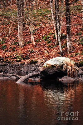New England Fall Photograph - Autumn by HD Connelly