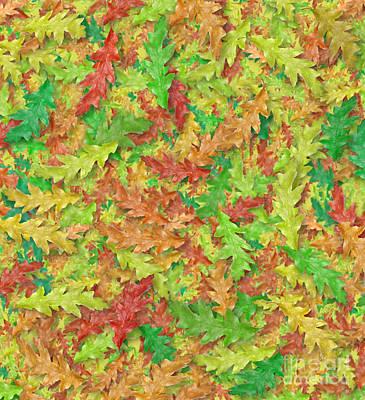 Photograph - Autumn Leaves by David Nicholls
