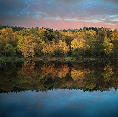Beautiful Vibrant Autumn Woodland Reflecions In Calm Lake Waters Art Print by Matthew Gibson