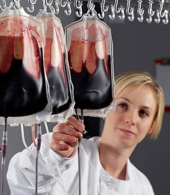 Blood Processing Art Print by Tek Image