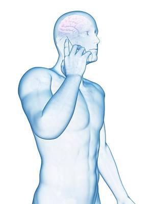 Cell Phone And Human Brain Art Print by Sebastian Kaulitzki