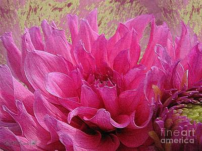 Painting - Dahlia Named Elsie Huston by J McCombie