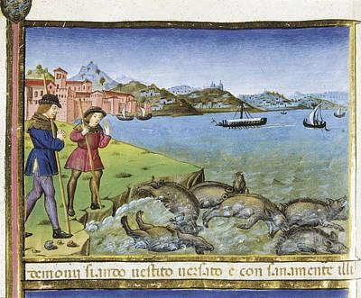 De Predis, Cristoforo 1440-1486 Print by Everett