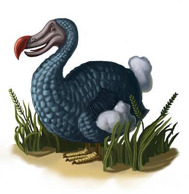 Dodo Bird Art Print by Spencer Sutton