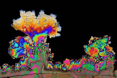 Crystalline Photograph - Dopamine Drug Crystals by Antonio Romero