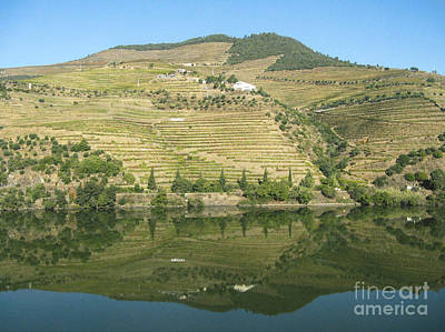 Art Print featuring the photograph Douro River Valley by Arlene Carmel