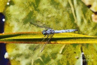 Dragonfly Print by George Atsametakis