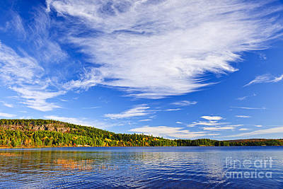 Blue Sky Photograph - Fall Forest And Lake by Elena Elisseeva