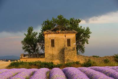 France, Provence Art Print