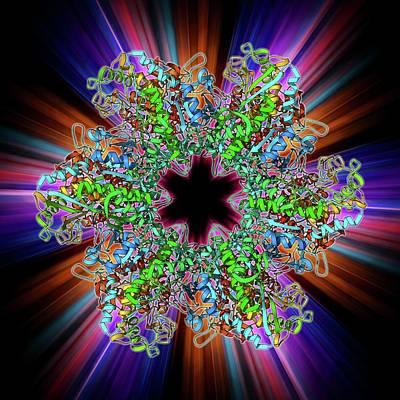 Glutamine Synthetase Enzyme Art Print by Laguna Design