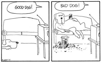 Lazy Dog Drawing - Good Dog Bad Dog by Rhodes Rumsey