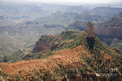 Photograph - Grand Canyon by Jim West