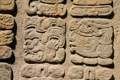 Stela Photograph - Guatemala, Quirigua Mayan Ruins by Cindy Miller Hopkins